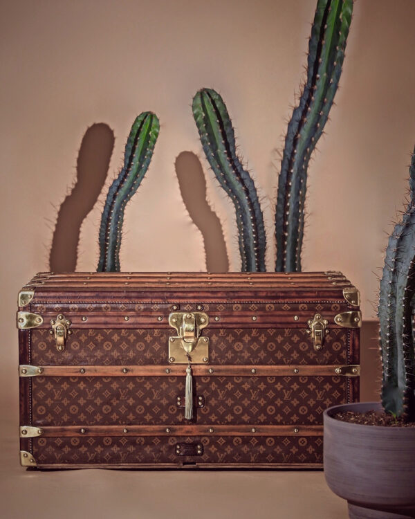 well-traveled-trunk-louis-vuitton-thumbnail-product-5725-8